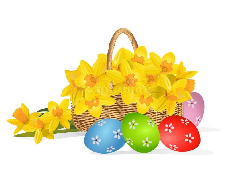 Gele die narcissen of gele narcisbloemen in de mand op wit wordt geïsoleerd stock illustratie