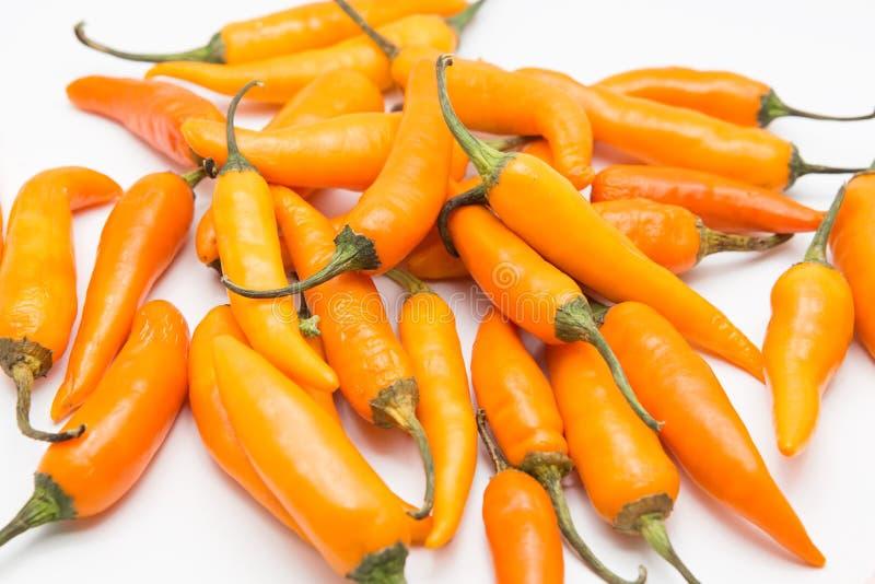 Gele die Spaanse peperpeper op een witte achtergrond wordt geïsoleerd royalty-vrije stock afbeelding