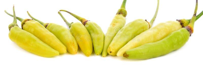 Gele die Spaanse peperpeper op witte achtergrond wordt geïsoleerd stock fotografie