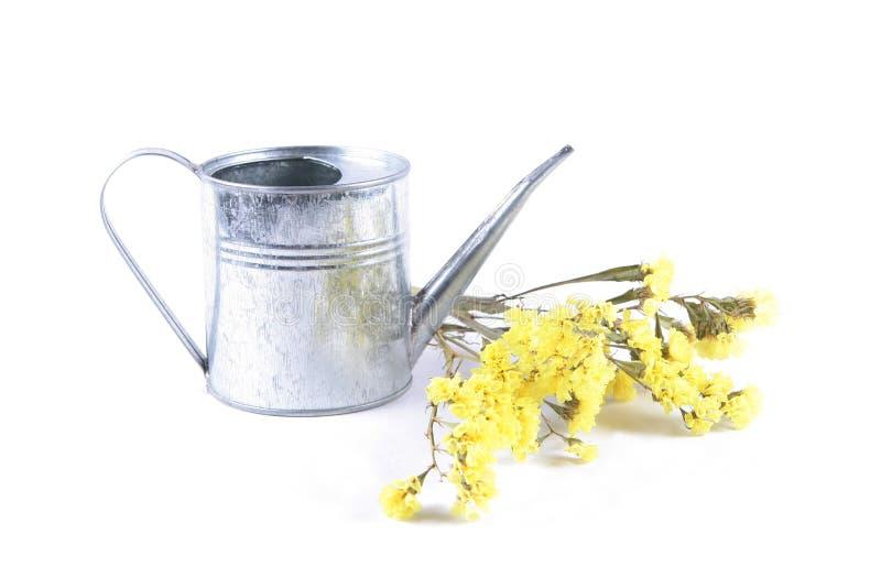 Gele droge bloemen royalty-vrije stock afbeelding