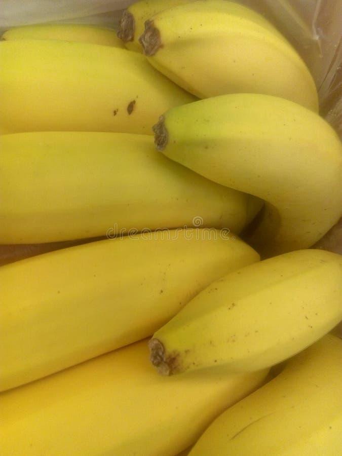 Gele echte bananen stock foto