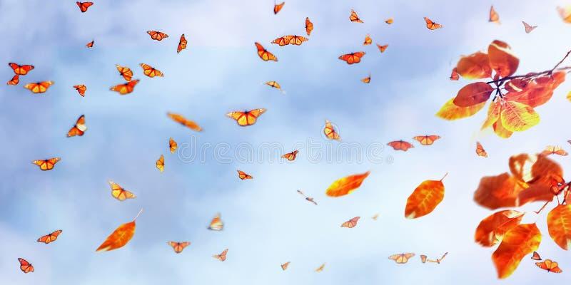 Gele en rode heldere de herfstbladeren en vlinders tegen een blauwe hemel met wolken in het zonlicht stock fotografie