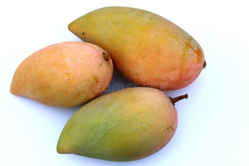Gele geïsoleerde mango drie royalty-vrije stock foto's