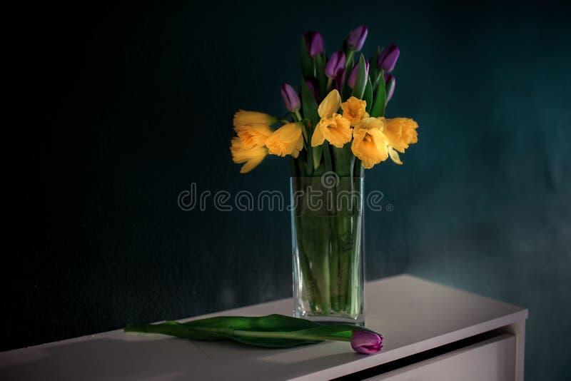 Gele gele narcisbloemen met purpere tulp die in vaas met groene muur bloeien royalty-vrije stock foto's