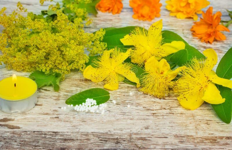Gele geneeskrachtige kruiden en druppeltjes stock afbeelding
