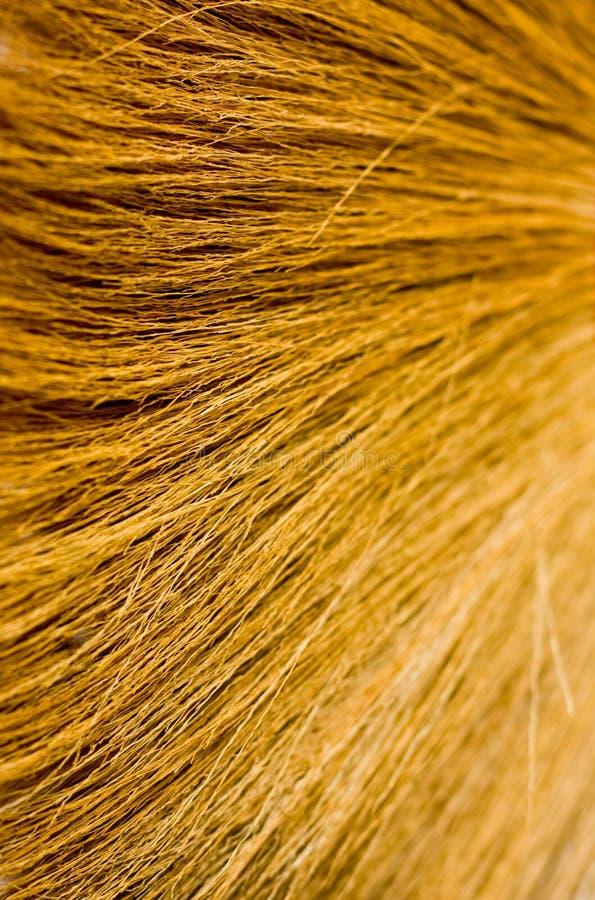 Gele georiënteerde stro natuurlijke textuur als achtergrond stock afbeeldingen