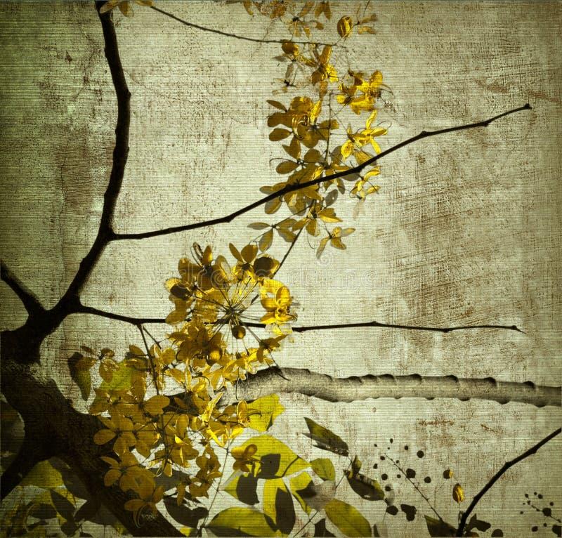 Gele grungeKerala bloesem royalty-vrije stock fotografie