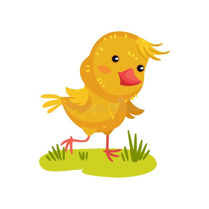 Gele kip in de weide Vector illustratie op witte achtergrond royalty-vrije illustratie
