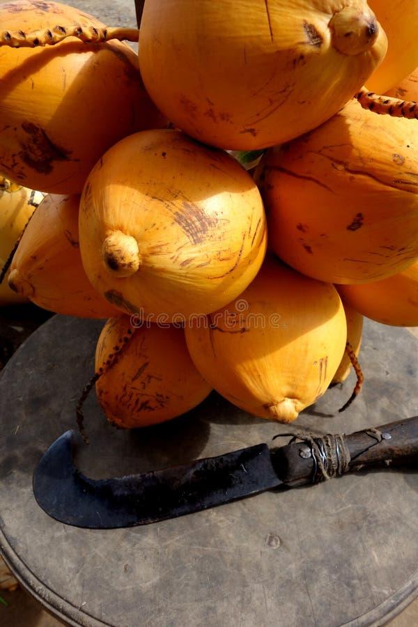 Gele Koning Coconuts met Vastgehaakte Machete stock afbeeldingen