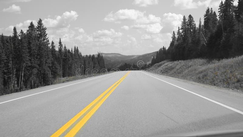 Gele lijn op de weg stock foto