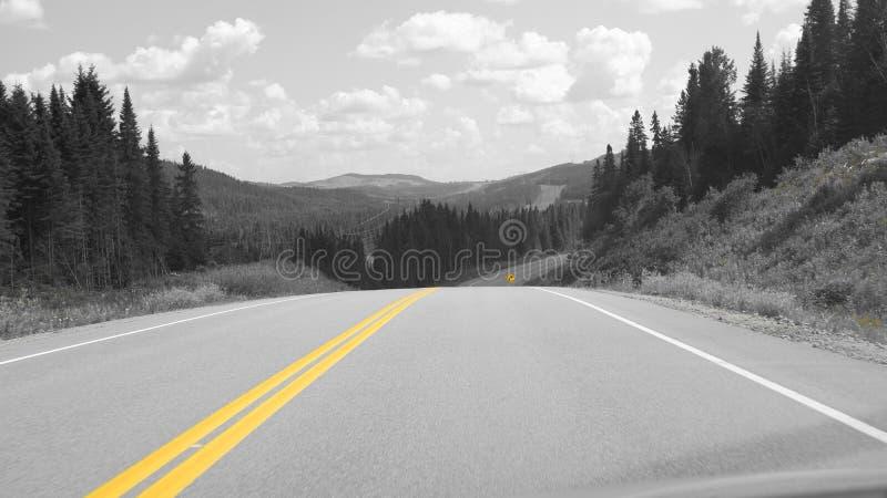 Gele lijn op de weg stock afbeeldingen