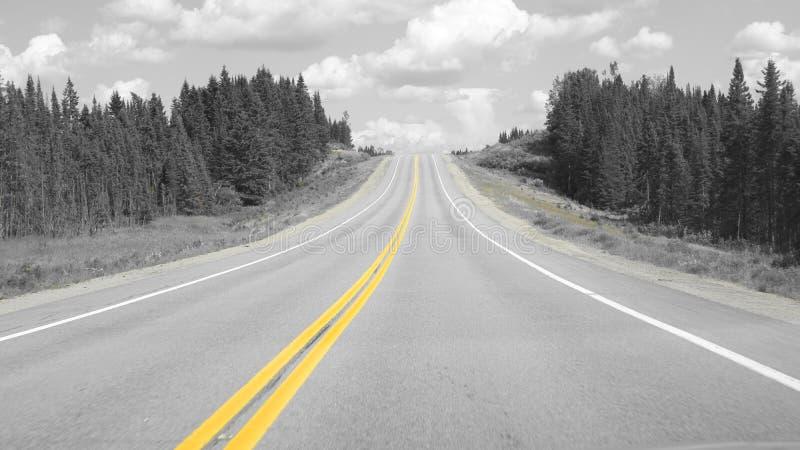 Gele lijn op de weg stock foto's