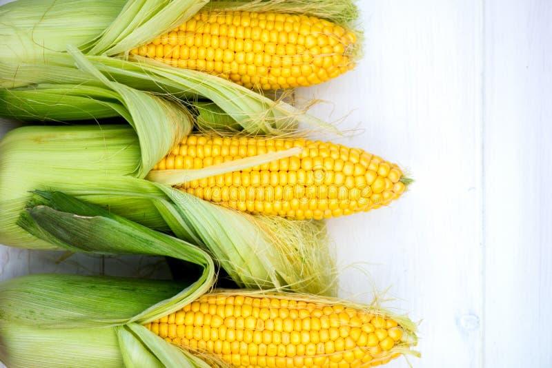 Gele Maïskolvenclose-up op Witte Achtergrond, Hoogste Mening, Macro stock afbeelding