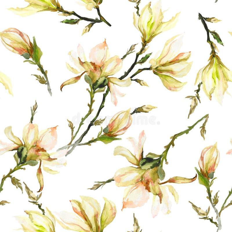 Gele magnoliabloemen op een takje op witte achtergrond Naadloos patroon Het Schilderen van de waterverf Getrokken hand royalty-vrije illustratie
