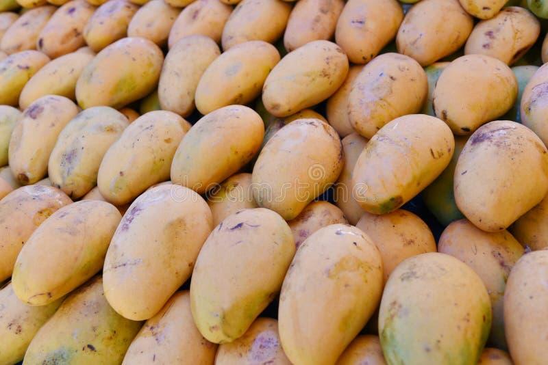 Gele mango royalty-vrije stock afbeelding