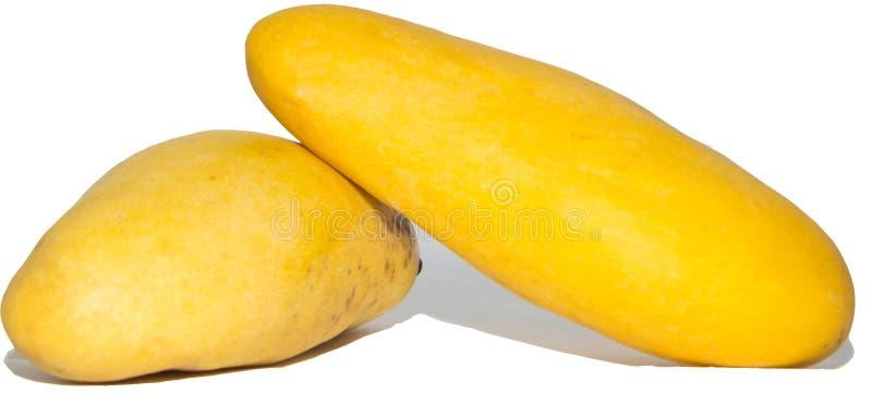 Gele mango royalty-vrije stock afbeeldingen
