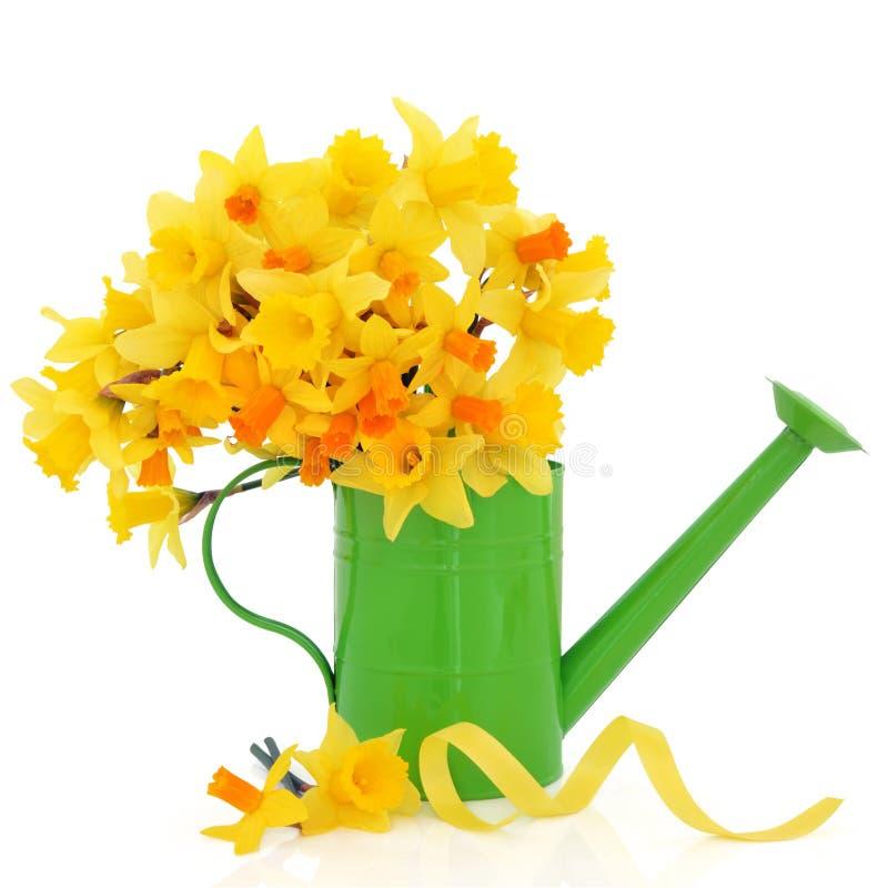 Gele narcis en Narcissen royalty-vrije stock foto