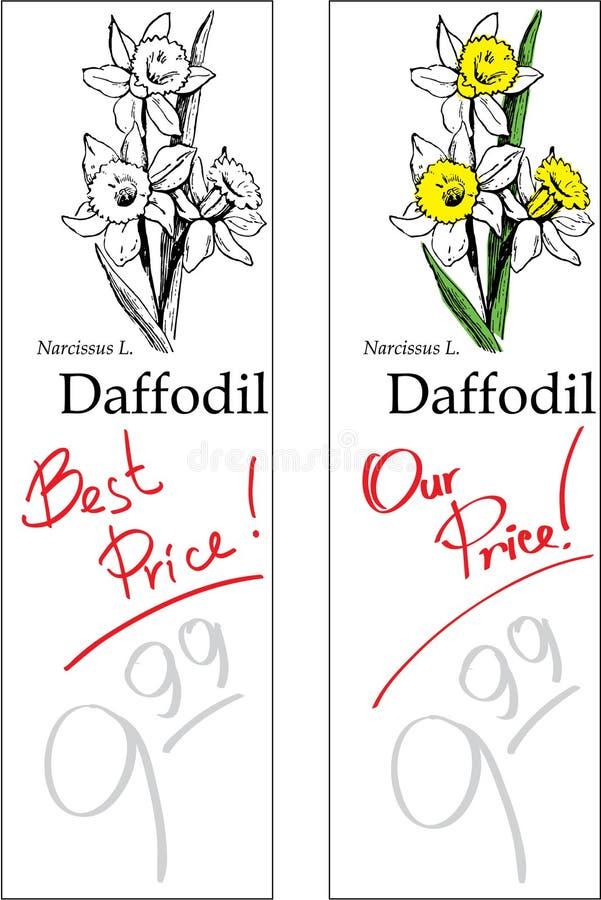 Gele narcis - Twee Prijskaartjes royalty-vrije stock afbeelding