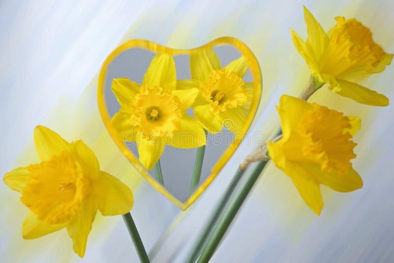 Gele narcissen in een spiegel worden weerspiegeld die stock afbeelding