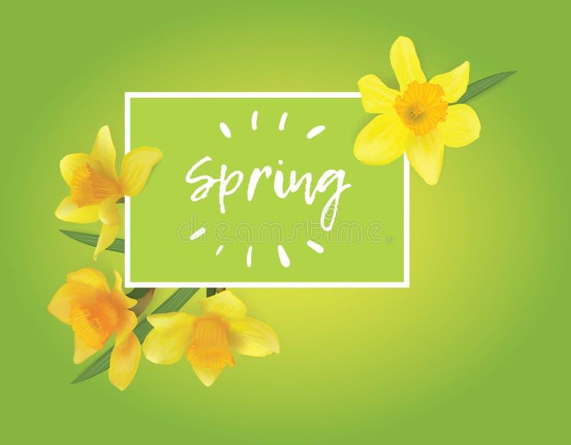 Gele narcissen op een groene achtergrond vector illustratie