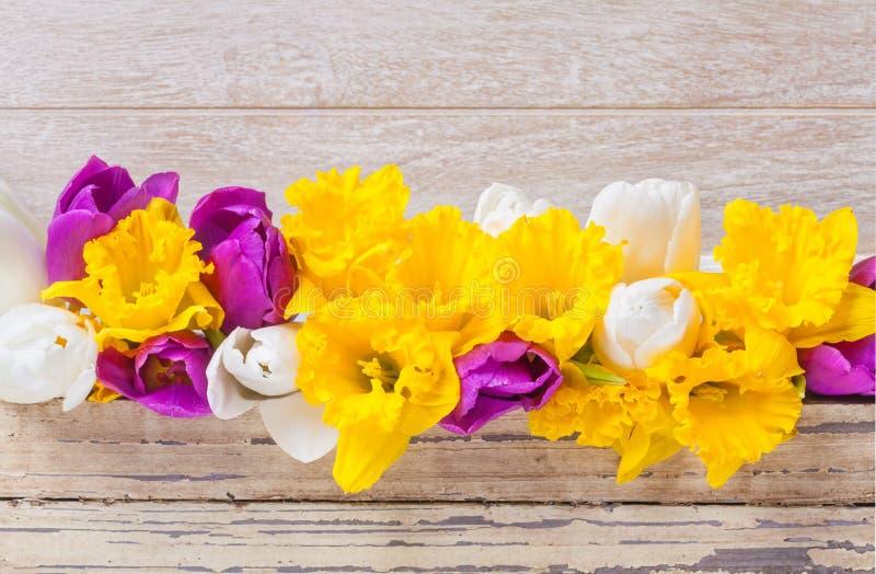 Gele narcissen, tulpen, hout royalty-vrije stock foto's