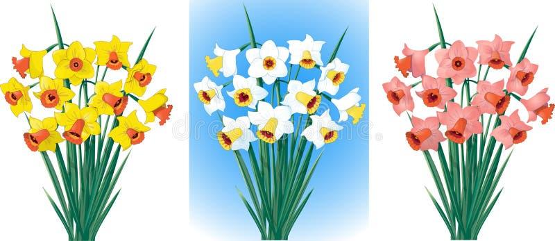Gele narcissen in verschillende kleuren stock illustratie
