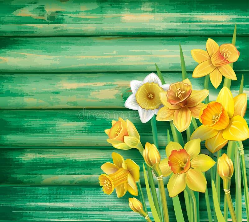 Gele narcissenbloemen op de houten achtergrond vector illustratie