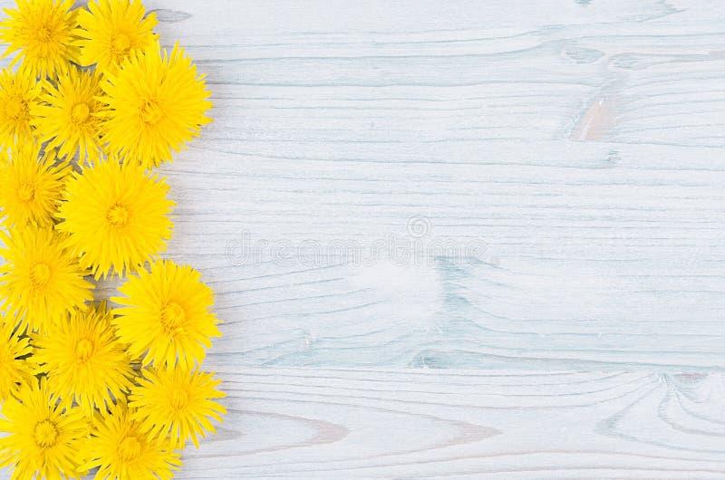 Gele paardebloembloemen als decoratieve grens op lichtblauwe houten raad Exemplaar ruimte, hoogste mening royalty-vrije stock fotografie