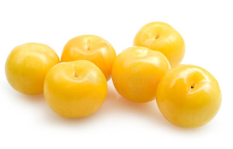 Gele pruimen stock afbeelding