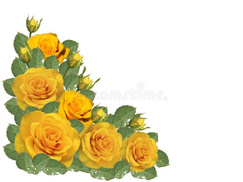 Gele rozen op een transparante achtergrond stock illustratie