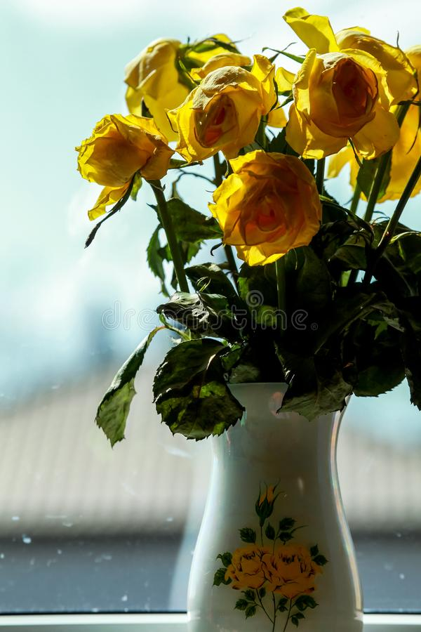Gele rozen in vaas bij het venster royalty-vrije stock fotografie