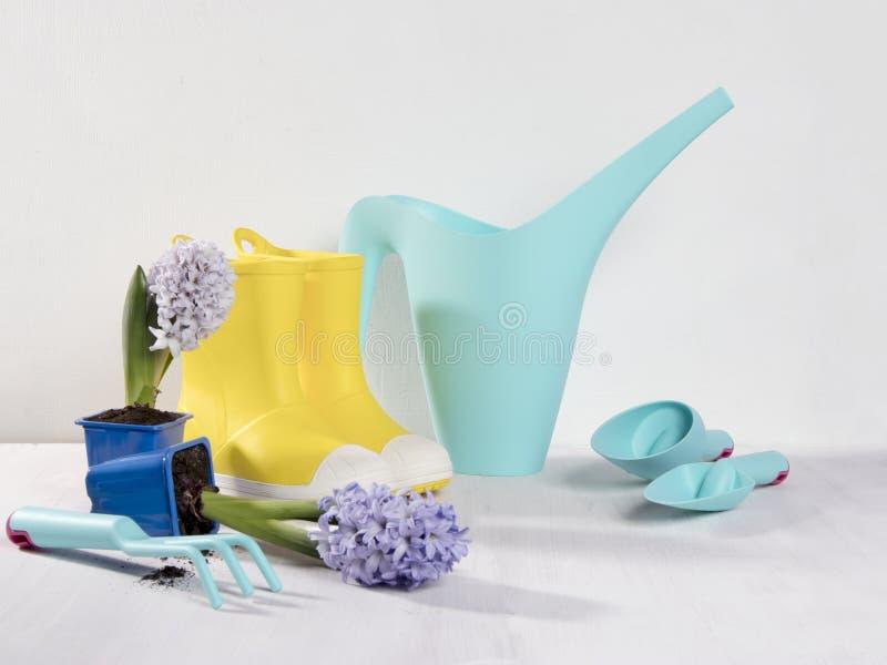 Gele rubberlaarzen en blauwe gieter met een boeket van bloemen van gele gele narcissen en witte en roze tulpen op witte bac stock afbeelding