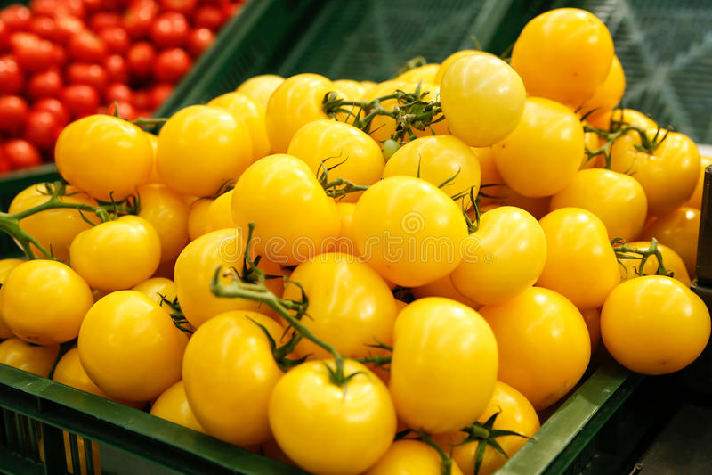 Gele tomaten stock afbeelding