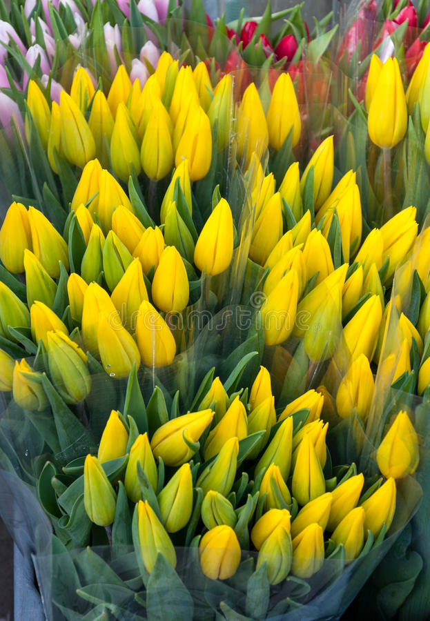 Gele tulpen bij markt royalty-vrije stock afbeelding