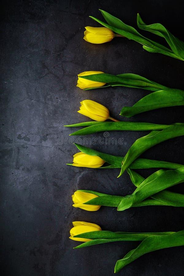 Gele tulpenbloemen op donkere achtergrond Het wachten op de lente Gelukkige Pasen-kaart, de dag van vrouwen, de dag van de moeder stock afbeelding