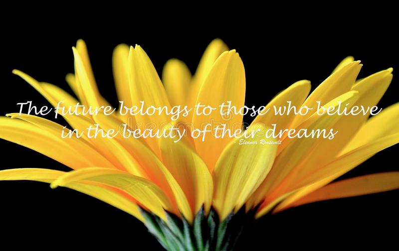 Gele uitbarsting en een inspirerend citaat door Eleanor Roosevelt stock foto's