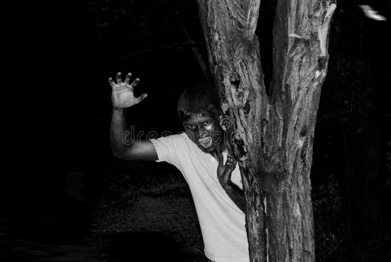 Gele vampier kijkt van de boomnacht stock afbeelding