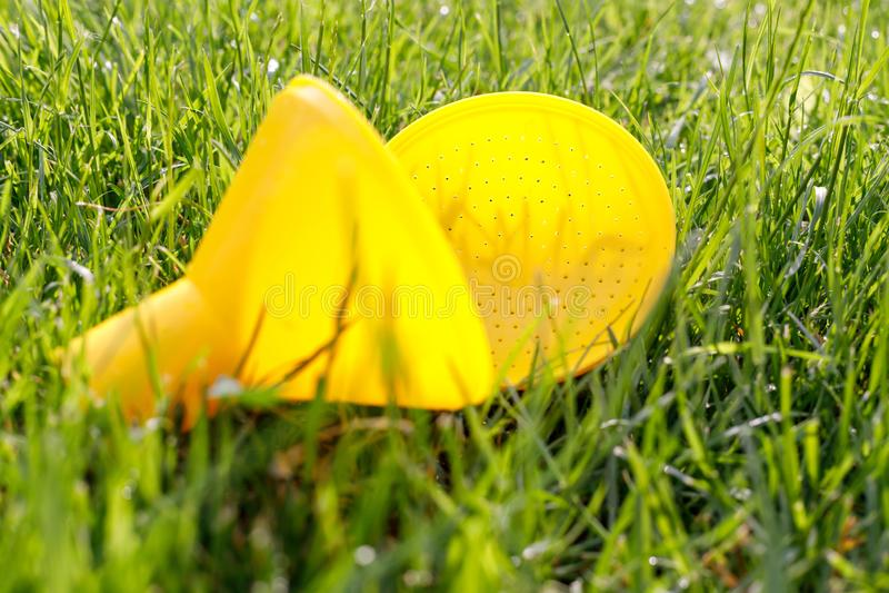 Gele verdeler voor gieter op groen jong gras stock afbeelding