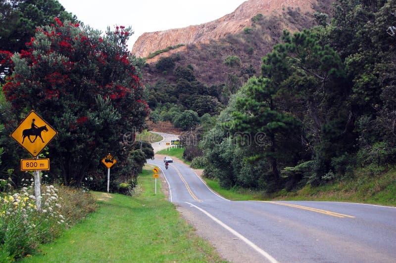 Gele verkeersteken in heuvelige weg stock fotografie