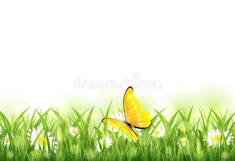Gele vlinder en bloem in het gras stock illustratie