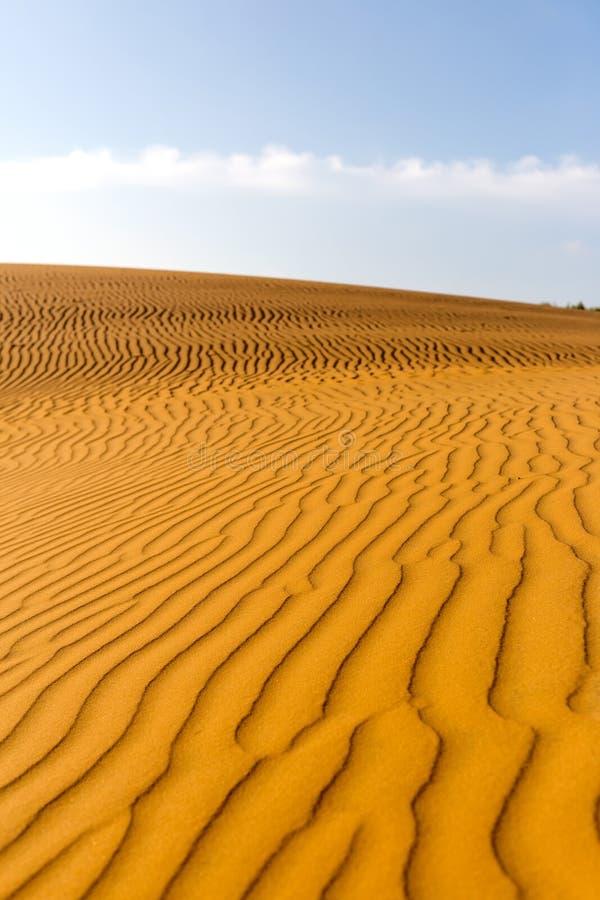 Gele zandige golvende duinen in woestijn bij dag stock afbeeldingen