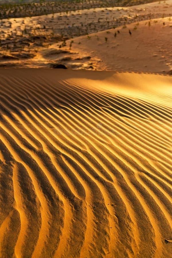 Gele zandige golvende duinentextuur royalty-vrije stock afbeeldingen