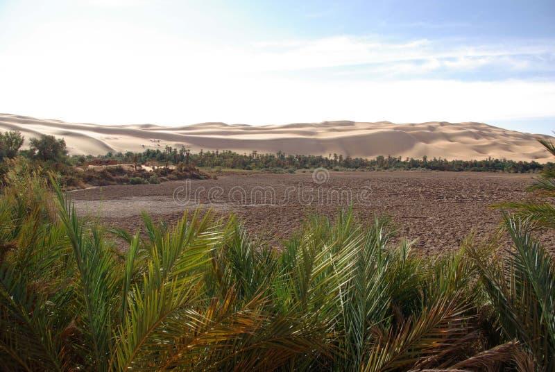 Geleerter See, Libyen stockbilder