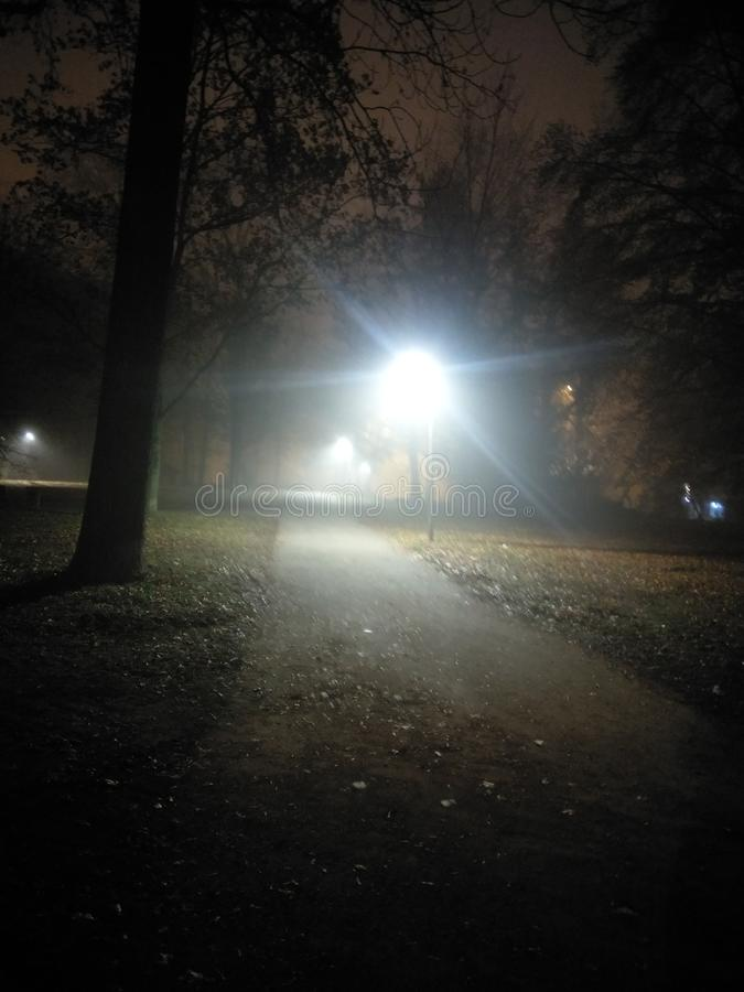 Gelegentlicher Nachtpics stockfoto