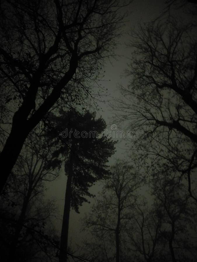 Gelegentlicher Nachtpics, nightstreets lizenzfreies stockbild