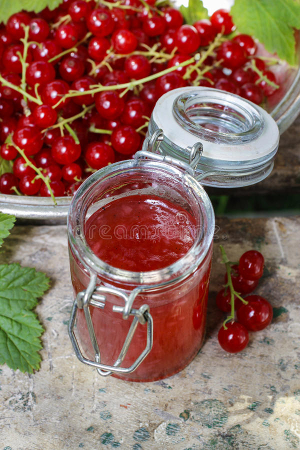 Geleia do corinto vermelho em preservar o vidro fotografia de stock royalty free