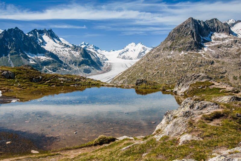 Geleira de Aletsch atrás de um lago pequeno perto de Eggishorn imagem de stock