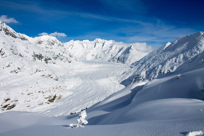 Geleira de Aletsch Gletscher/Aletsch fotografia de stock