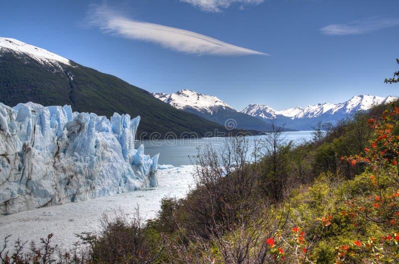 Geleira de Perito Moreno no EL Calafate, Argentina fotos de stock royalty free