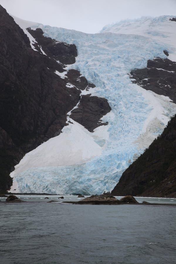 Geleira patagonian imagens de stock